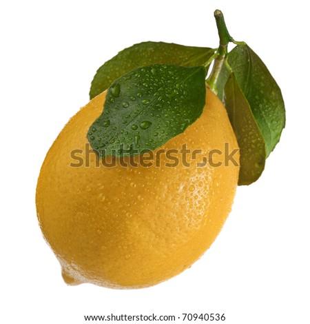 Single Fresh Ripe Lemon Fruit Icon isolated on a white background - stock photo