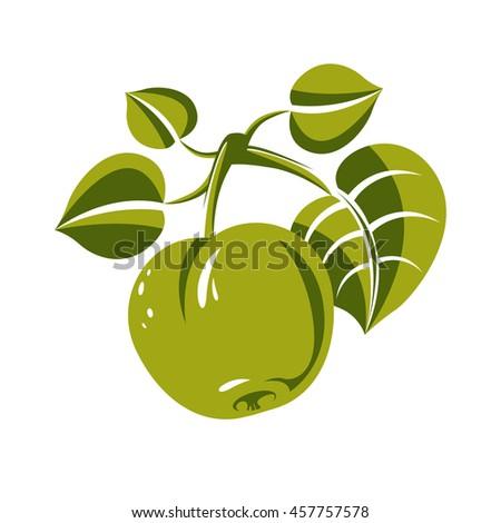 Single green simple apple with leaves, ripe sweet fruit illustration. Healthy and organic food, harvest season symbol.  - stock photo