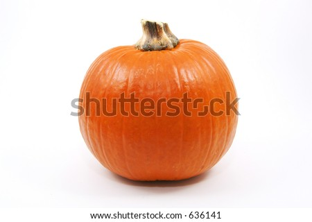 Single high resolution pumpkin isolated on a white background