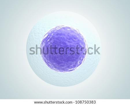 Single human egg cell high quality 3d render