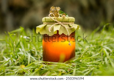 Single jar of organic honey closed and decorated with flowers, wrapped with hemp and placed on dew green grass with bright orange color through the clear honey - stock photo