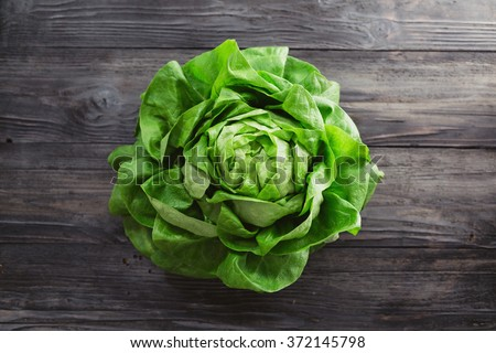 Single lettuce head over rustic wooden background - stock photo