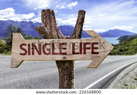 Single Life wooden sign with a road background - stock photo