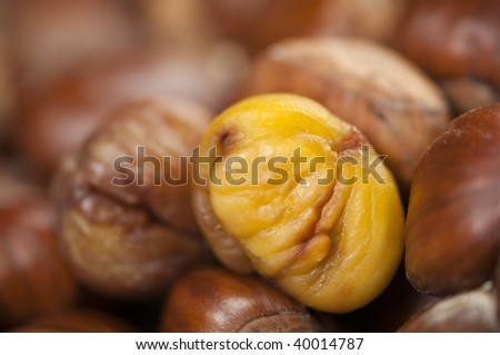 single peeled roasted chestnut kernel with others waiting