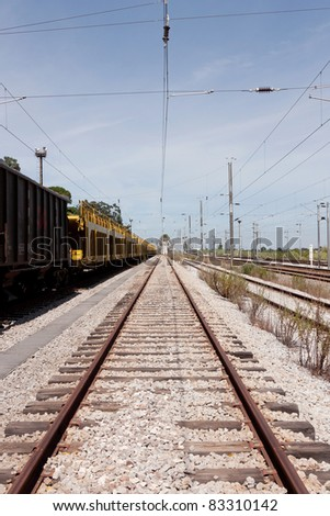 Single railway to horizon with empty cargo wagons on side