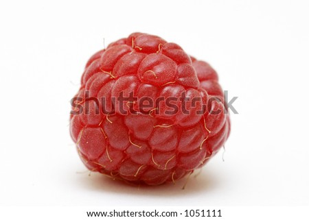 Single raspberry isolated against a white background