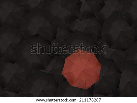 single read umbrella standing out among many black umbrellas