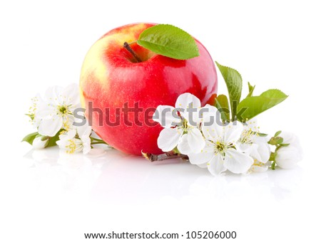 Single Red Apples with Leaf and Flowers isolated on a white background - stock photo