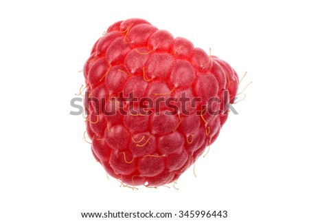 Single red raspberry isolated on white background. Studio shoot.
