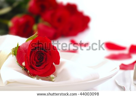 Single red rose on a dinner plate with roses and rose petals in the background - stock photo