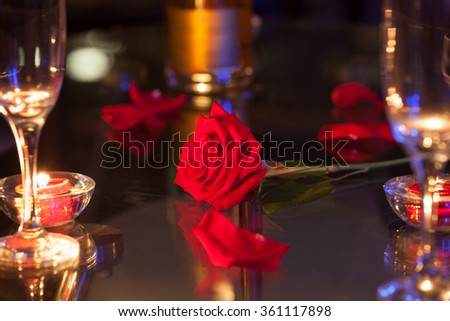 Single red rose on a table - stock photo
