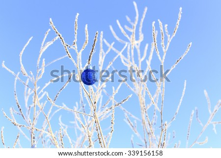 single shiny Christmas ball hanging on snowy branches. single blue ball hanging on the branches of a tree like reindeer antlers. winter, outdoors - stock photo