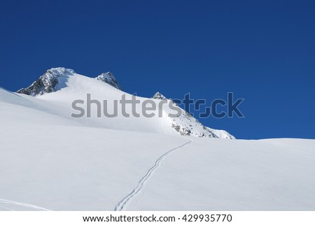 single ski trail up the glacier of mt. Gabler and Reichenspitze at Austria Zillertal alps - stock photo
