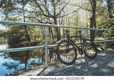 single speed bicycle at nature park in germany