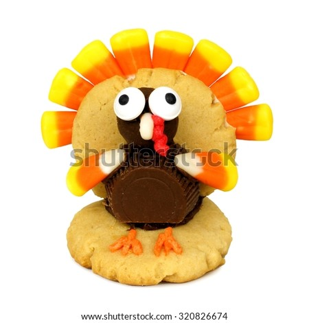 Single Thanksgiving turkey shaped cookie isolated on a white background - stock photo