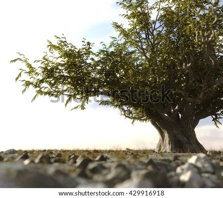 single tree left in a desert rock landscape conceptual background 3D illustration - stock photo