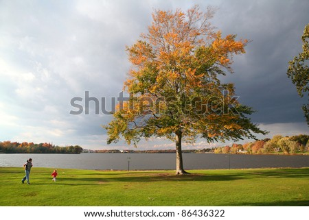 Single tree next to lake with people running nearby - stock photo