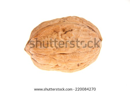 Single walnut isolated on a white background.  - stock photo