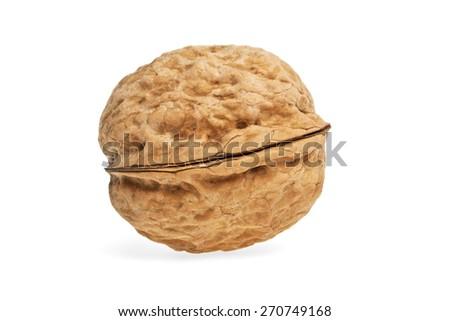 Single walnut isolated on a white background - stock photo