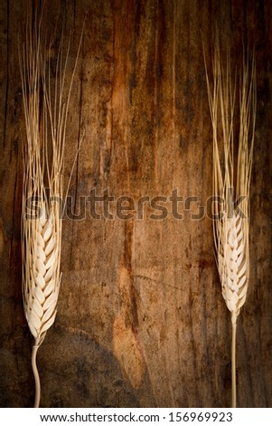 single wheat ear on the wooden table