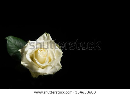 bloomingrose black single women Details about blooming rose women plus size 1x 2x 3x elegant black white top blouse shirt blooming rose women plus size 1x 2x 3x elegant black white top blouse shirt.