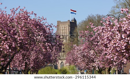 Sint-Martinus church tower (1621) with blossom in the city of Woudrichem, province of Noord-Brabant, the Netherlands. - stock photo