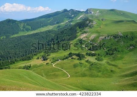 "sinuous trail along slope bjelasica mountains in ""Biogradska Gora"" National Park, Montenegro   - stock photo"