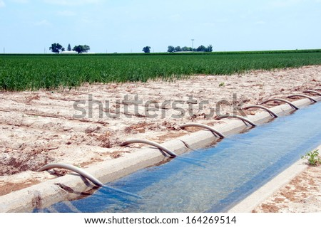 Siphon tubes used to irrigate a field of onions in central Colorado, USA - stock photo