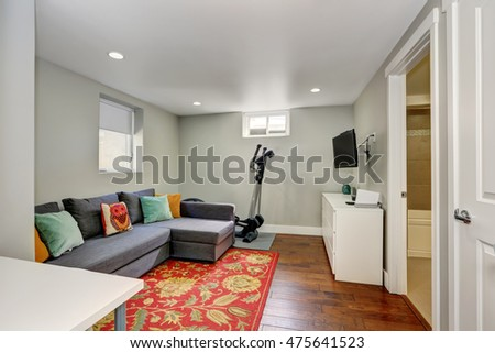 Sitting room interior with sport equipment and TV in the basement. There is a grey sofa with colorful pillows on a red floral accent rug. Northwest, USA