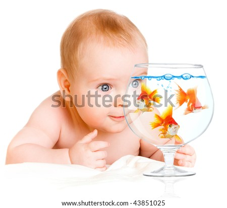 six-month-old baby and  goldfishs on a white background - stock photo