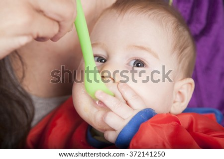 six months age blonde caucasian baby red bib in woman mother purple velvet jacket arms eating puree with green plastic spoon - stock photo