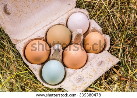 Six-pack of eggs in different colors and sizes in a cardboard box standing on hay - stock photo