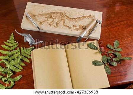 Skeleton and archaeological tools.Training for reccord history of fossil.Simulated same as real digging. - stock photo