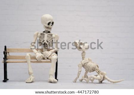Skeleton and dog companion - stock photo