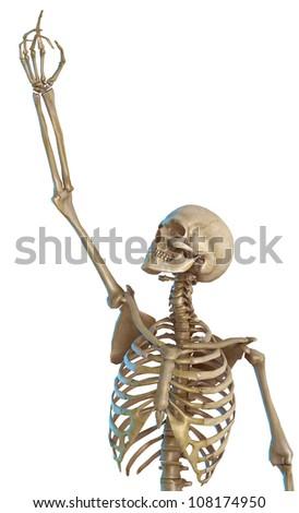 skeleton asking for forgiveness - stock photo