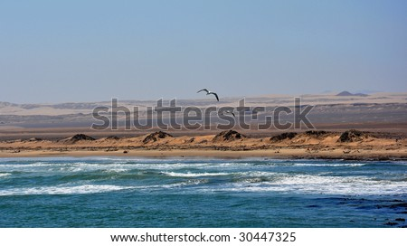 Skeleton coast in Namibia - stock photo