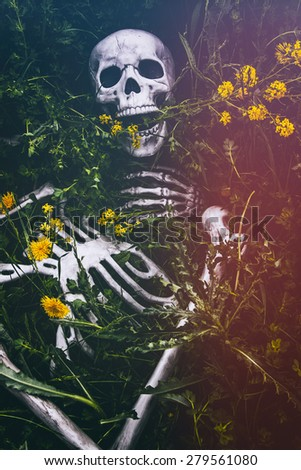 Skeleton in the Grass 8. Human skeletal bone remains among the grass, weeds and dandelions of a field meadow. Edited with a vintage film effect. - stock photo