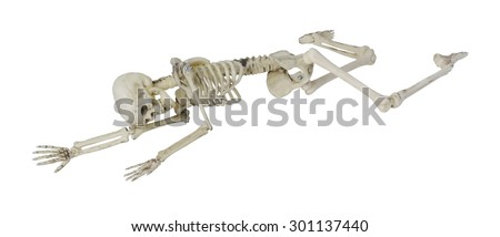 Skeleton laying partially prone and sideways, perhaps in the position the person died - path included - stock photo