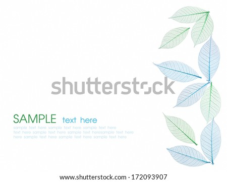 Skeleton leaf abstract background. Decorative ornament of colored leaves pattern. Green and blue leaves. Space for text.