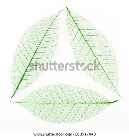 Skeleton leaf background as a recycle sign - stock photo