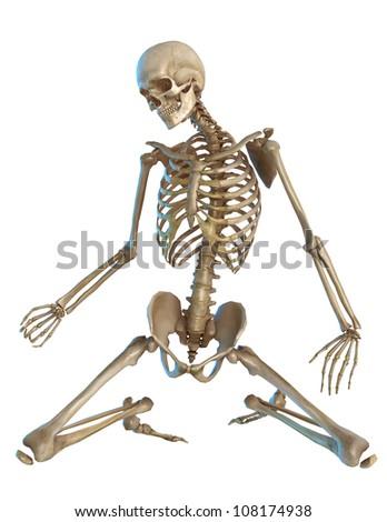 skeleton on the floor - stock photo