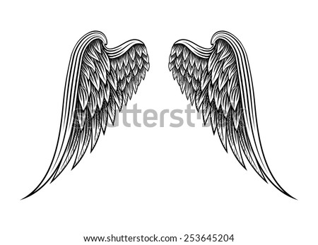 Sketch of two hand drawn angel wings isolated on white background - stock photo