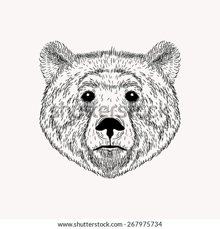 Sketch realistic face Bear. Hand drawn  illustration in Doodle style. Engraving sketch for tattoos. - stock photo