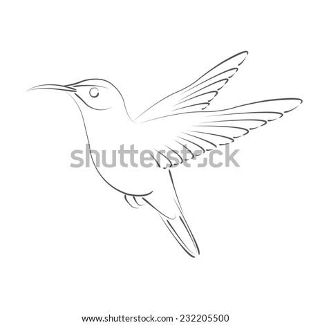 Sketched hummingbird. Design template for label, banner, postcard, logo. Raster illustration. - stock photo
