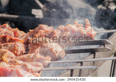 skewers of meat on a skewer, grilled - stock photo