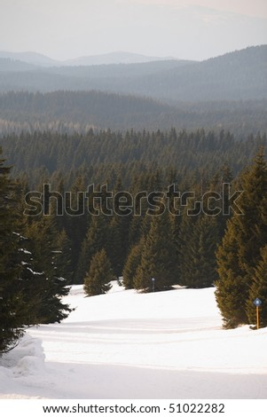 Ski slope in a thick forest - stock photo