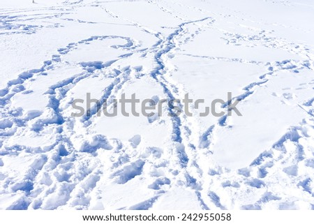Ski traces on snow in winter mountains close-up - stock photo