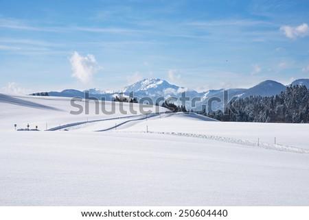Ski tracks in the snow covered landscape - stock photo