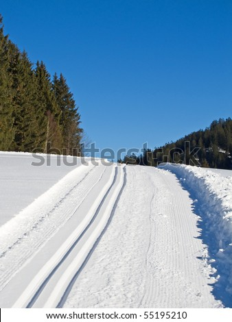 Ski tracks through the winter forest - stock photo