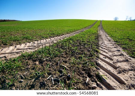 skid-marks on a harvested field - stock photo